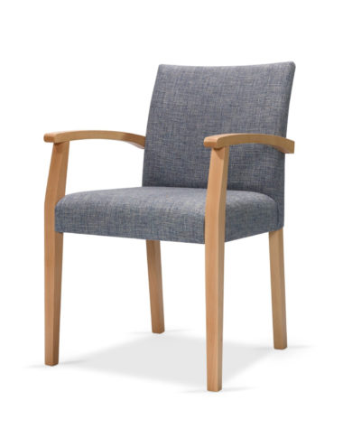 Cristiana Side Chair